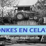 Yonkes en Celaya