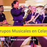 Grupos Musicales en Celaya