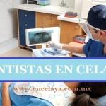 Dentistas en Celaya Guanajuato