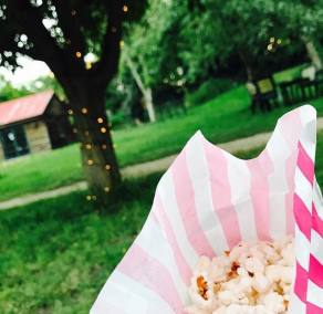 Enchanted Cinema Summer Screenings 2017 - Grease at The Orchard Tea Gardens (5)