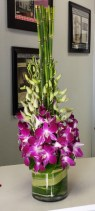 efi-orchids-stand-tall