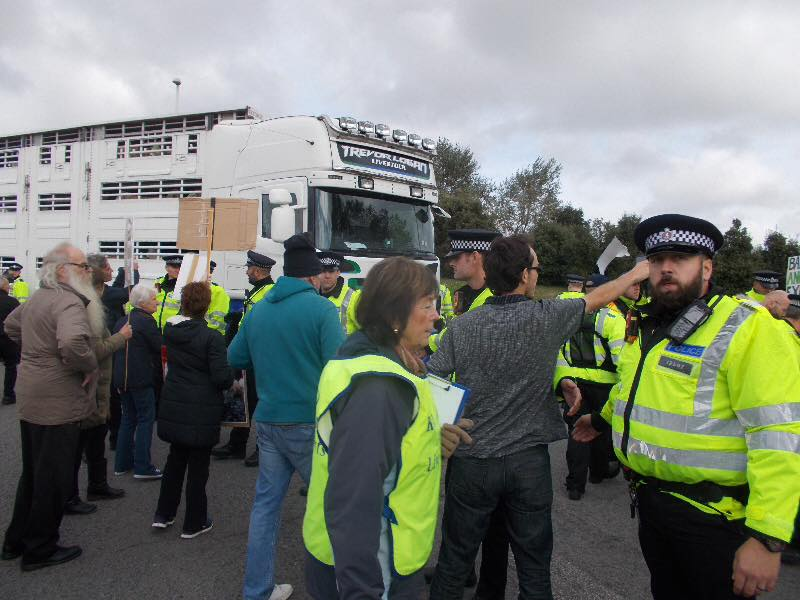 RAMSGATE | 80 Live Animal Export Protesters Halt Slaughter Lorries