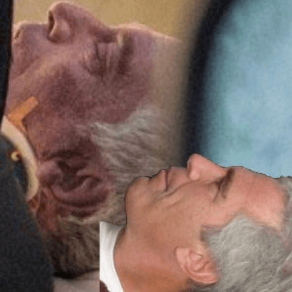 Jeffrey Epstein Suicide Photographer William Farrington That's Not Epstein - Enchanted LifePath Reports