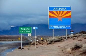Arizona State Line (Arizona by Proenza Schouler)