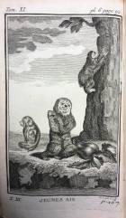 55. BUFFON. Histoire naturelle, générale et particulière. 1769. In-12. Aïs.