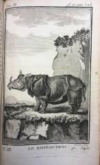 55. BUFFON. Histoire naturelle, générale et particulière. 1769. In-12. Rhinocéros.