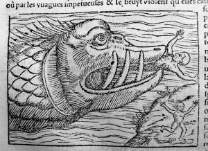 145. MÜNSTER. La cosmographie universelle. [Bâle, Henry Pierre, 1556]. Job