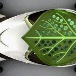 Imagen desde encima del Saic Leaf
