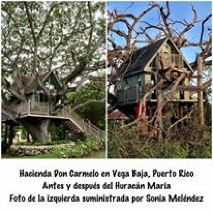 robert rivera hacienda don carmelo