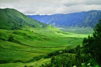 Mount Bromo Savanna