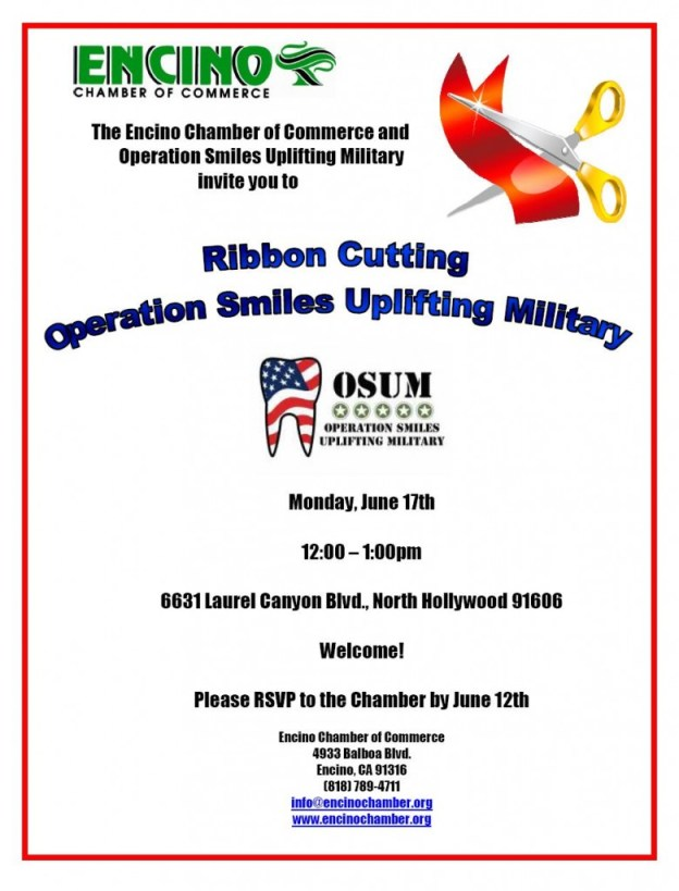 Operation Smiles flyer