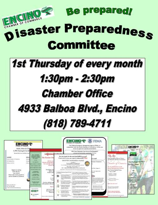 disaster prep flyer