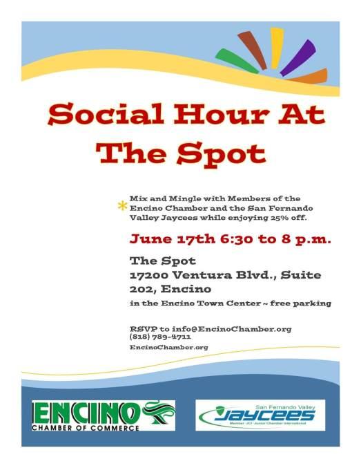 D - The Spot Mixer - June 17th