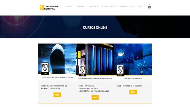 Cursos online The Security Sentinel