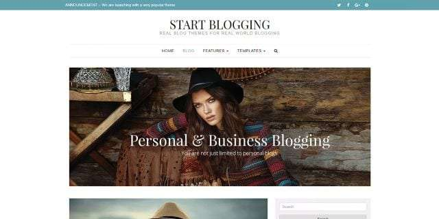 THEMES-WORD-PRESS-start-blogging