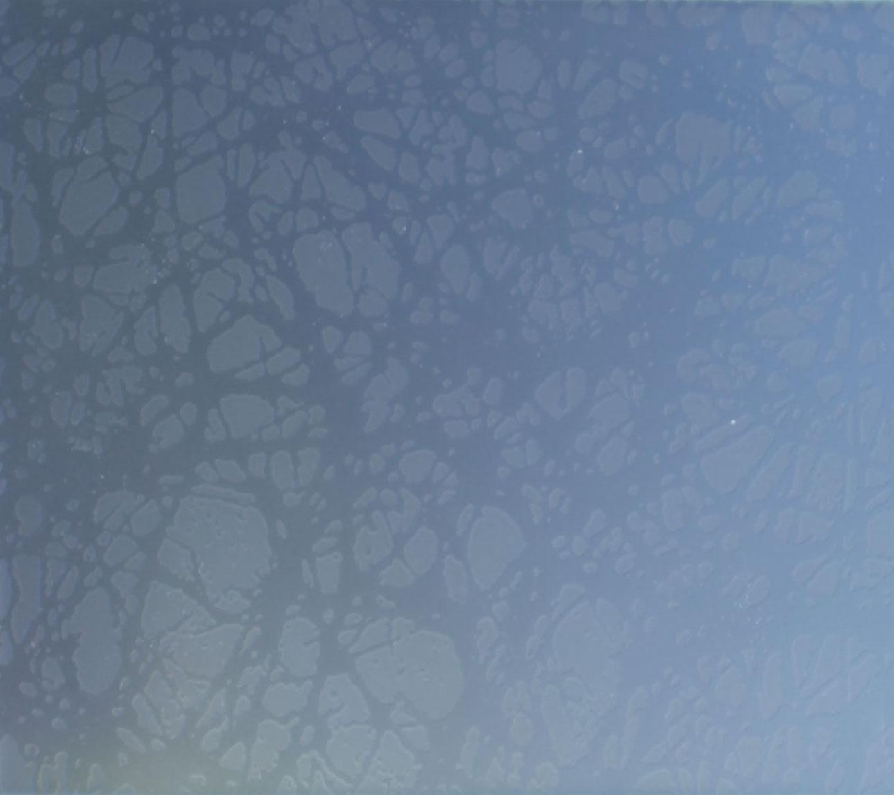 Acid=etched Glass 04