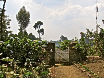 In the movie, Dian Fossey was as portrayed coming through this gate and meeting Roz for the first time after she fled the Congo. In reality, they had met twice before.