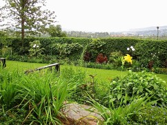 A walk around our garden in Rwanda/enclos*ure