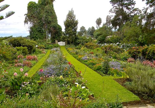 The flower borders seen from the front of the house. (Photo by J. Goodson.)