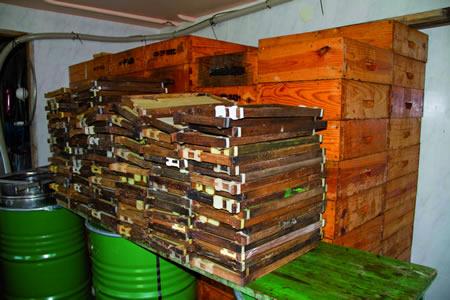 A produción e venda de mel e pole ecolóxico son a actividade da nova empresa Euromel, en Quiroga. EC.