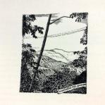 Ejemplo de Ilustración al final de cada capítulo. Fotografía tomada por Carolina Foronda.