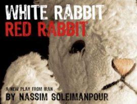 whitered_rabbits copy