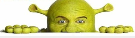 Shrek The Musical --- Facebook Cover Photo