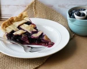 blueberry3