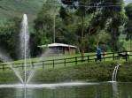 Truchera San Rafael