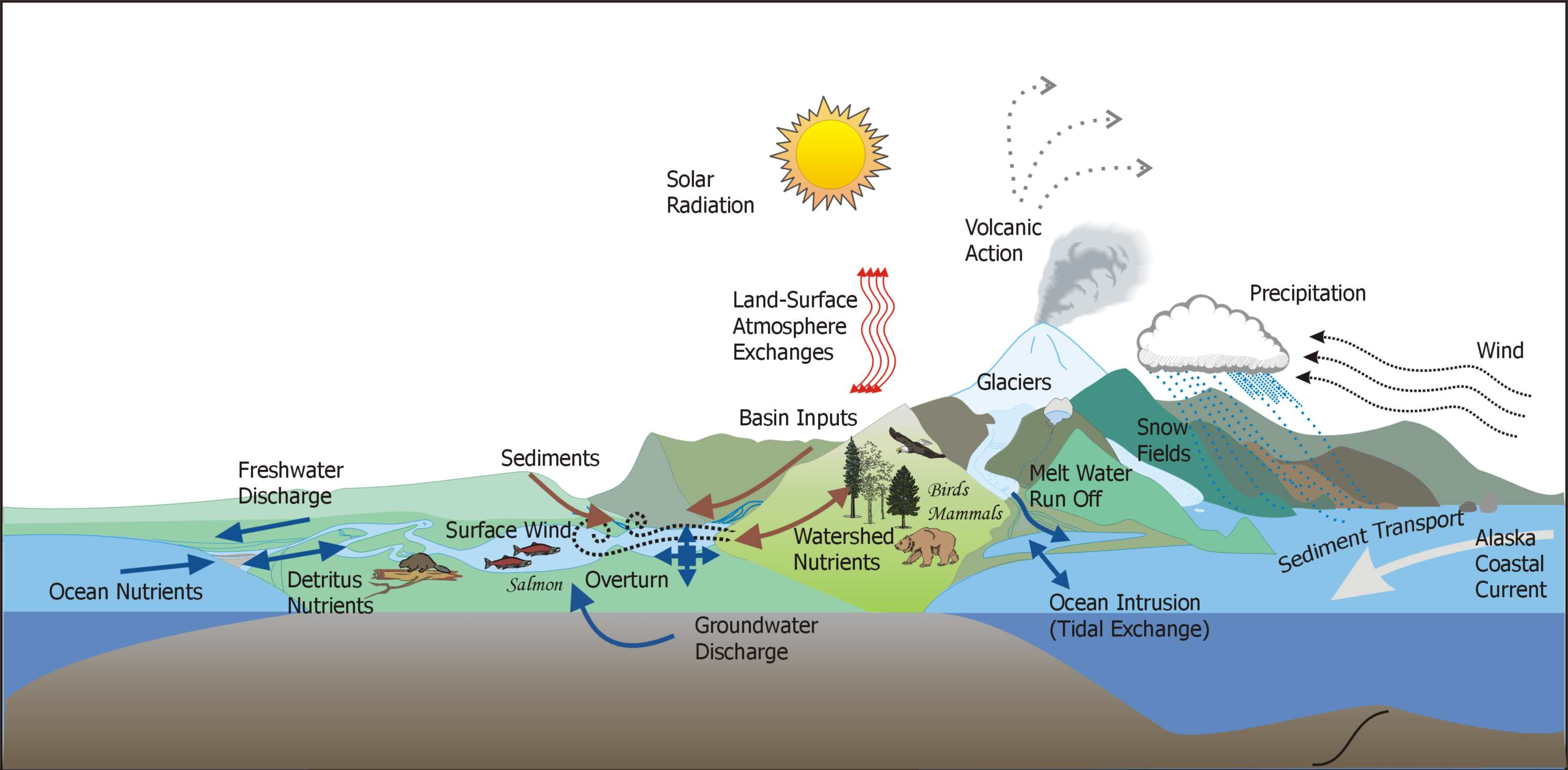 Ecological Purification Of Water And Sources Of Energy