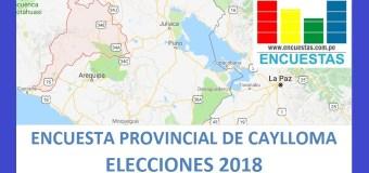 Encuesta Alcaldía Provincial de Caylloma – Mayo 2018