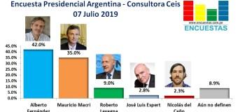 Encuesta Presidencial Argentina, Consultora Ceis – 07 Julio 2019