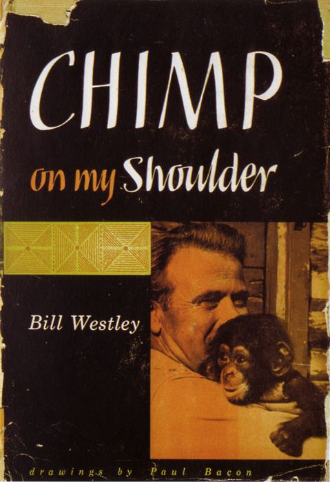 Paul Bacon's first book cover
