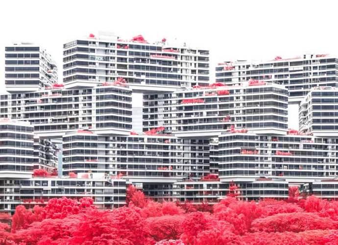 floral-phantasmagoria-finbarr-fallon-singapore-surreal-dreamscape-scarlet