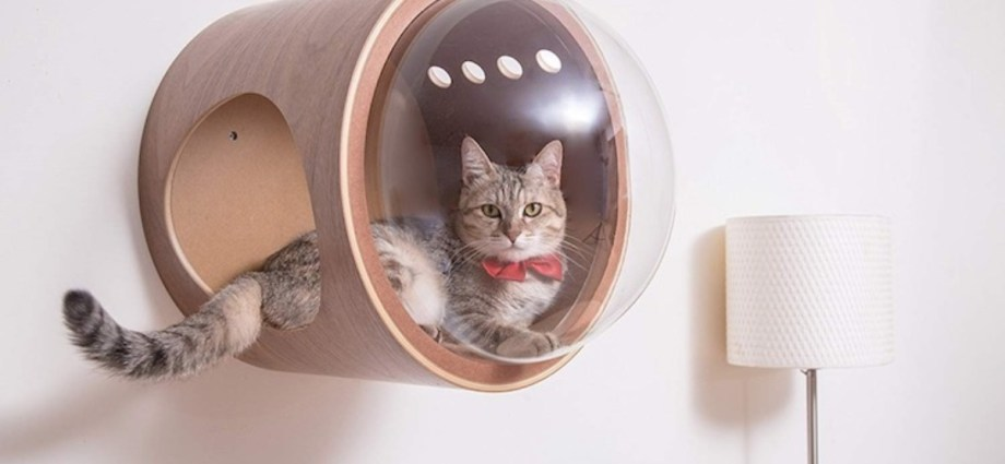 Spaceship Cat Bed