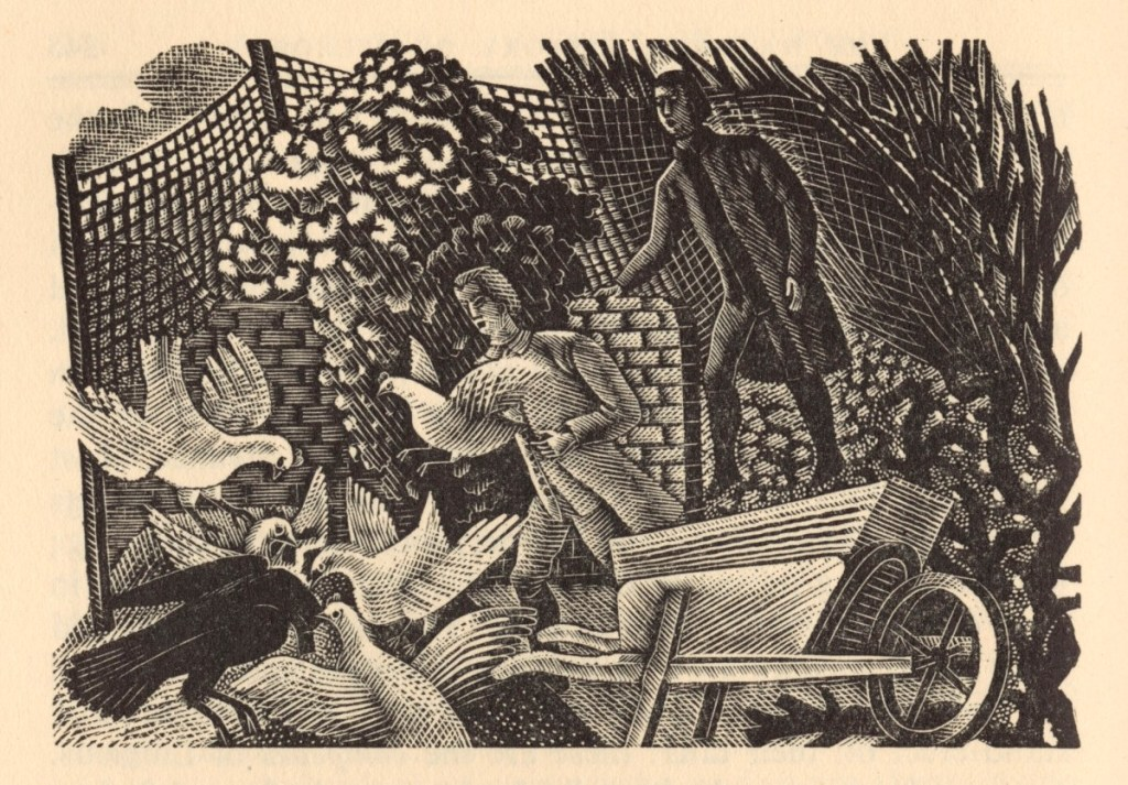 The motion of birds by Eric Ravilious