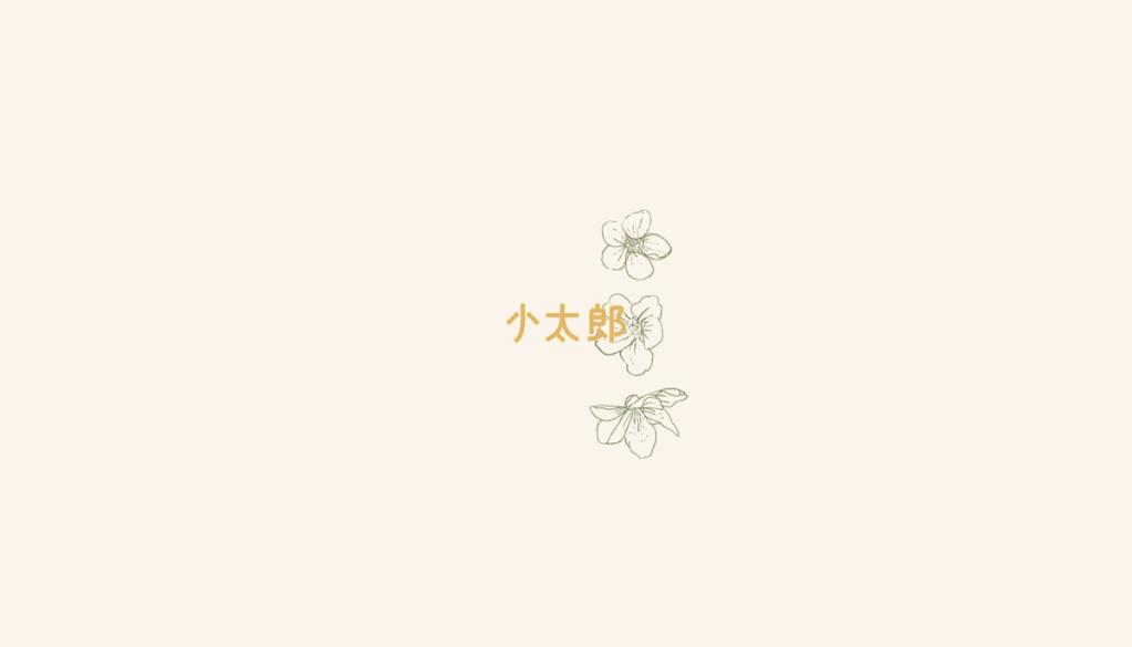 Kotaro Branding & Art Direction by Estudio Wikka