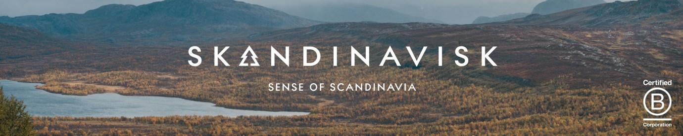 Skaninavisk Banner