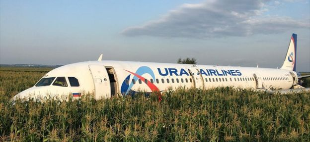Russia bird strike: How cool heads glided jet down to safety