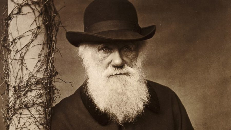 Darwin manuscripts sought by Interpol