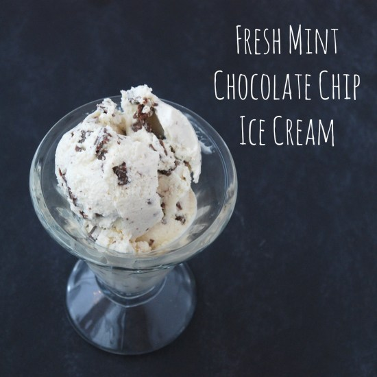 Make mint chocolate chip ice cream with fresh mint and high-quality chocolate chunks for an amazingly delicious dessert.