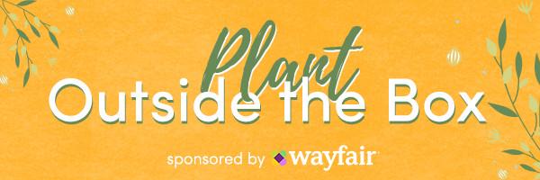 PlantOutsideTheBox