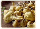 Macafem | Herbs for Menopause