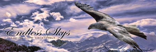 Endless skys studio-eagle2