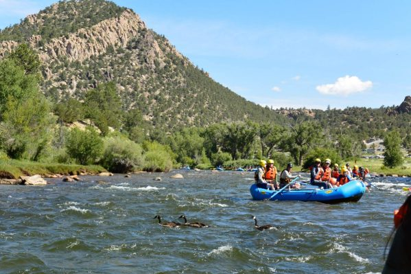 rafting_in_browns_canyon_nm_19679248010