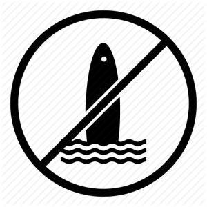 no_surfing_warning_prohibited_restricted-water_sport-512