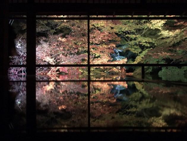 京都で秋の風物詩🍁紅葉の名所in瑠璃光院🍁