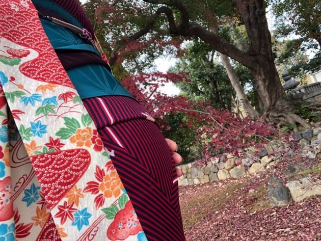 着物で京都ぶらり👘出産までにやりたいことシリーズ、着々とこなしてます😎