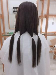 髪の毛の寄付〜ヘアドネーション〜