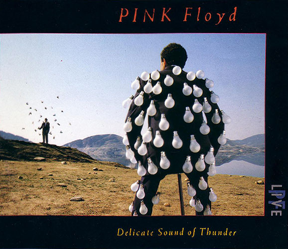 delicate-sound-of-thunder-pink-floyd-cover-foto.jpg